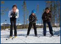 nordic skiing - classic and skate techniques